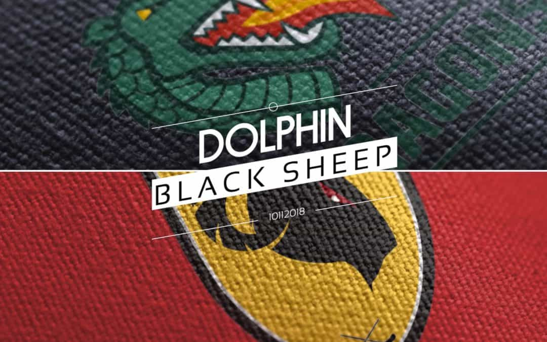 Dolphin too strong for Black Sheep