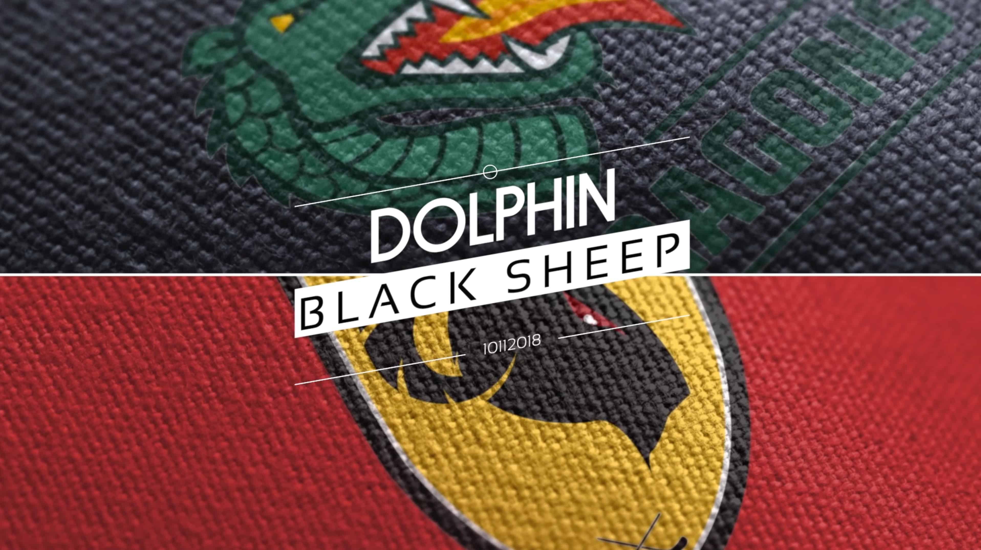 Dolphin versus Black Sheep 10112018